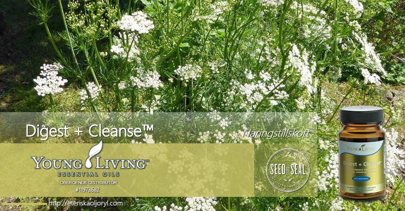 Näringstillskott Digest + Cleanse™