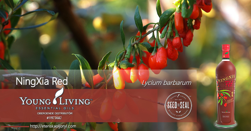 NingXia Red® antioxidantdryck
